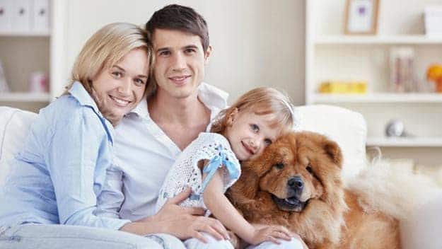 Wills & Trusts dog-young-family Direct Wills East Bedfont
